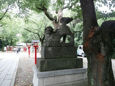 鷲宮神社の狛犬(右)