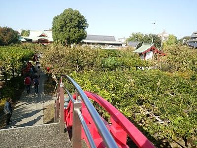 亀戸天神社の橋の上から
