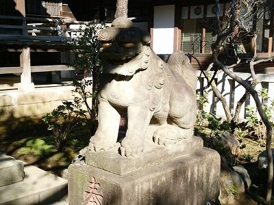 白山神社の狛犬(右)