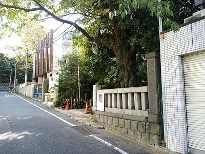氷川神社入り口